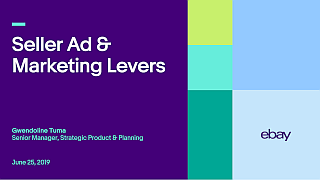 Seller Ad and Marketing Levers